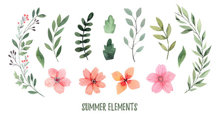 Watercolor illustration. Summer foliage. Botanical collection of green leaves, branches, flowers and herbs. Perfect for wedding invitations, greeting cards, posters, prints, packing