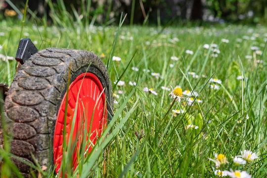 Gardenarbeit - Rasenmäher