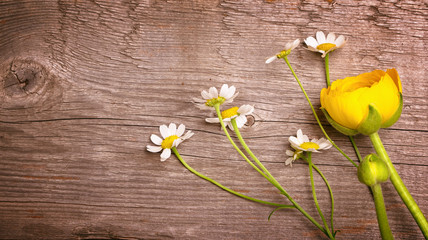 Chamomile and ranunculus flowers on rustic wooden background