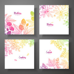 Set of colorful botanical cards with berries. Great design for natural and organic products. Vector vintage frame with blackberry, bluberry, cranberry, currant.
