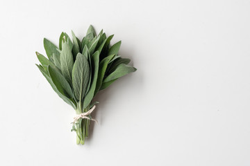 Photo sur Toile Condiment Close up of small bunch of sage tied with string on white background with copy space