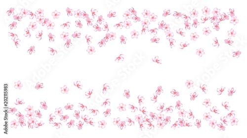 Wedding Sakura Cherry Rose Petals Fl Confetti Shower Vector Peach Le Blossom Soft