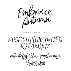 Fashionable modern font. Calligraphy