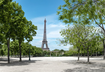 Paris, Eiffel tower behind spring trees, panorama from the Champ de Mars