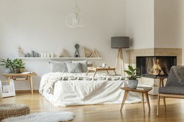 Cozy bedroom with fireplace interior