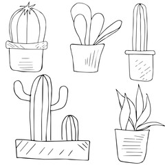 Set cacti in pots, hand-drawn. Vector image, black outline, lines.
