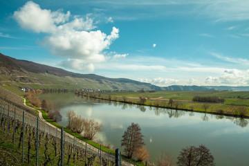 Moselle Landscape at Piesport vineyards spring Landscape