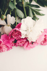 lovely pink peonies on rustic white wooden background, space for text. floral greeting card, flat lay. beautiful peony flowers, tender image. happy mothers or women day concept