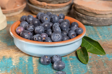 Organic healthy superfood blueberry in bowl, new harvest, raw, ready to eat