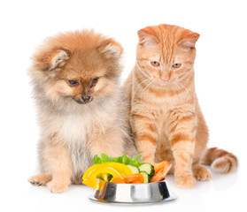 Cat and dog with a bowl of vegetables. isolated on white background