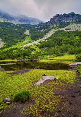 Beautiful landscape with lake and green grass in the mountain