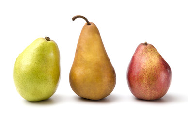 Three Pears of Various Varieties on a White Background