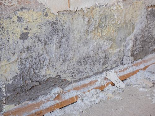 Gut gemocht Salpeter Bauschäden Wand