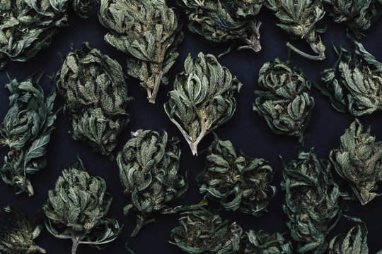Close up of dried marijuana buds