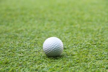 Golf ball in grass green