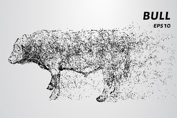Bull from of particles. The bull consists of dots and circles.