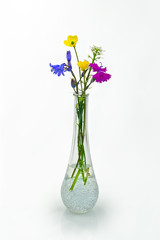 Flower vase with wildflowers on white background