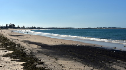 People relaxing and sun bathing on Stockton beach. Stockton bridge in the background.
