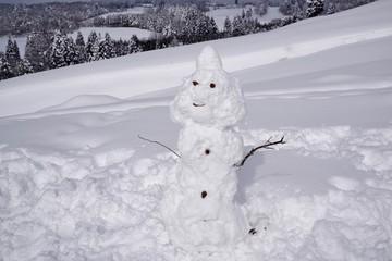 雪山と雪だるま