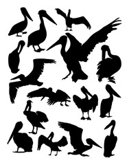 Pelican animal detail silhouette. Vector, illustration. Good use for symbol, logo, web icon, mascot, sign, or any design you want.