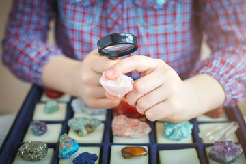 The child looks at his collection of minerals. The little geologist.