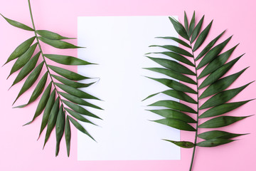 palm leaves on a pastel colorful background and a sheet of paper. photo in the style of minimalism. fashionable concept. a lot of free space for text.