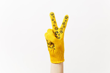 Close up of female hand in building yellow gloves showing victory sign isolated on white background. Accessories for renovation apartment room. Repair home concept. Copy space for advertisement.