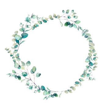 Watercolor eucalyptus branches wreath. Hand painted floral clip art: round frame isolated on white background.