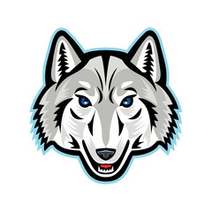Artic Wolf Head Front Mascot
