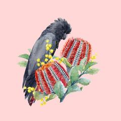 Watercolor australian banksia vector composition