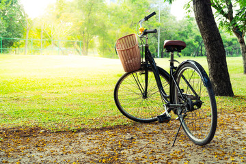 Bicycle in the nature park on holiday in the morning scene is an activity for exercise to be biked in the garden.