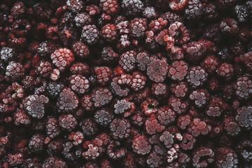 Frozen rasberrys