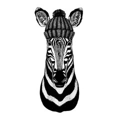 Zebra Horse Cool animal wearing knitted winter hat. Warm headdress beanie Christmas cap for tattoo, t-shirt, emblem, badge, logo, patch