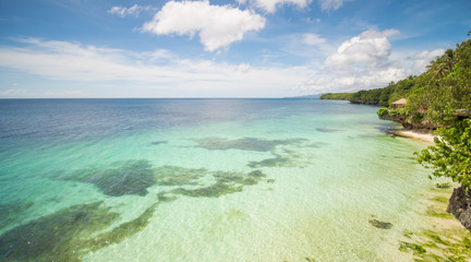 The tropical coast of the island of Bohol with corals. Philippines.