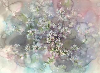 sakura blossom watercolor background