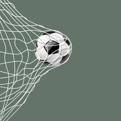 Soccer ball in net, vector illustration