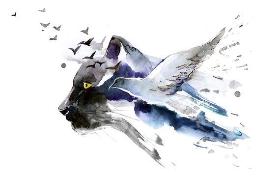predator and bird