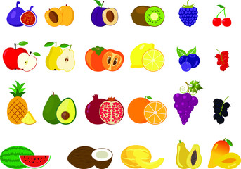 Set of different kinds of fruits icons. Collection of flat design icons presenting different types of fruits isolated on white background.