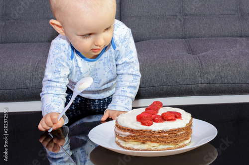 Stupendous First Birthday Celebration Of A Little Boy Little Boy Eating Funny Birthday Cards Online Inifofree Goldxyz