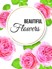 Vector floral banner card with pink garden rose in watercolor style.Greenery botanical template with text place for wedding invitation, greeting, covers, poligraphy, parfume,cosmetics, package