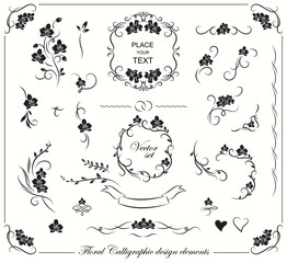 Set of floral frames, borders, labels, corners. Collection of original design elements. Vector calligraphy swirls, swashes, ornate motifs.