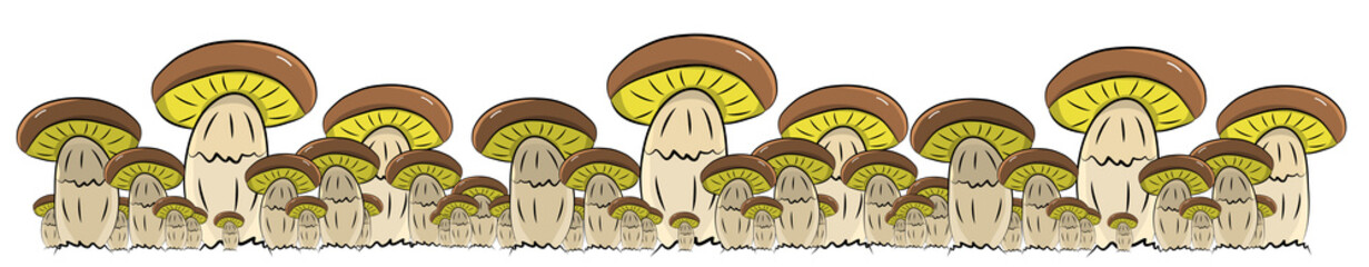 Crowd of brown boletus mushrooms in adult form, hand drawn vector illustration in horizontal line