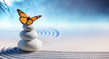 Photo sur Aluminium Zen Butterfly On Spa Massage Stones In Zen Garden
