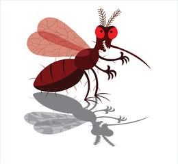 A Mosquito