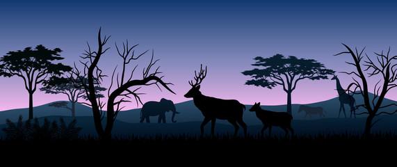 Silhouette animals savannas in the night