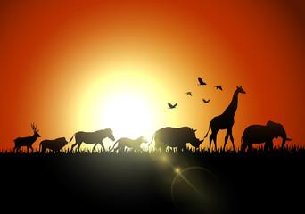 Silhouette animals on savannas