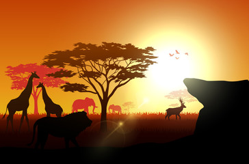 Silhouette animals on savannas in the afternoon