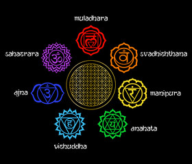 illustration - set of chakras on the theme of meditation and yoga.