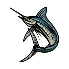 Marlin, Fish vector illustration