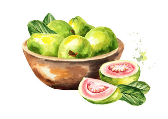 Bowl with guava fruits. Watercolor hand drawn illustration